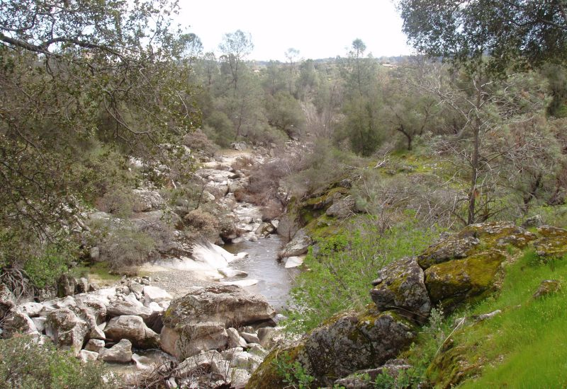 Coarsegold Creek runs through the Park